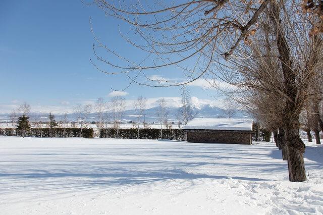 大橋鎮子さんが育った、北海道の風景写真。